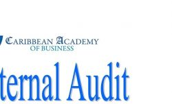 Internal audit introduction